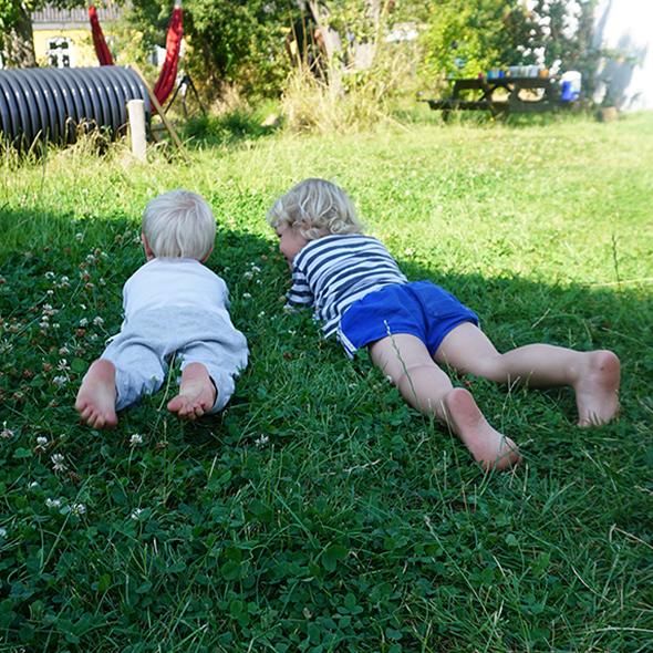 Børn i græsset i Skattekisten på Strynø